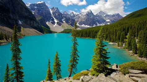 the national cheap flights to banff national park canada 258 64 in