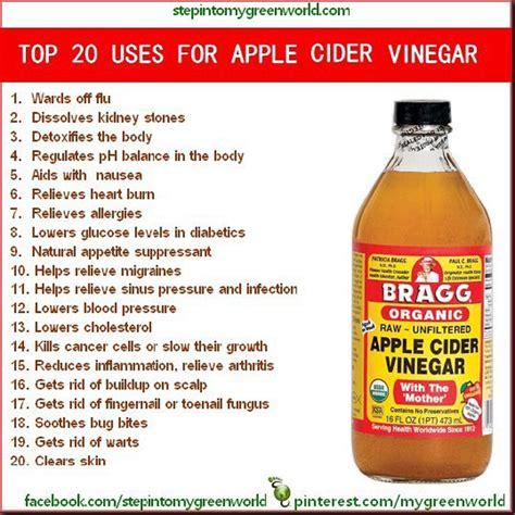 apple cider vinegar top 20 uses for apple cider vinegar health fitness