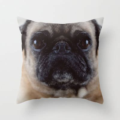 Pug Pillows by Pug Pillow Cover Cover Only Pug Photograph Pug Throw