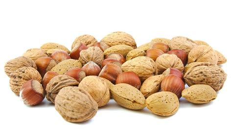 healthy fats besides nuts four nuts that support your liver liversupport