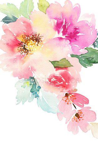 fiori ad acquerello foto stock fiori ad acquerelli immagini fiori ad