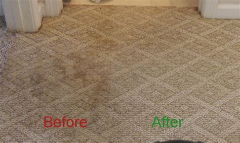 Best Way To Clean A Rug by Best Way To Clean Berber Carpet At Home Carpet Vidalondon
