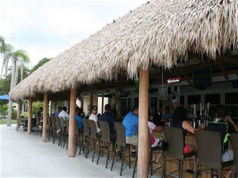 dolphin tiki hut marco island 1000 images about sw florida family on