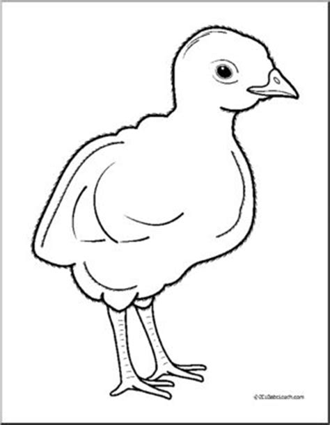 baby turkey coloring page baby turkey coloring pages coloring pages