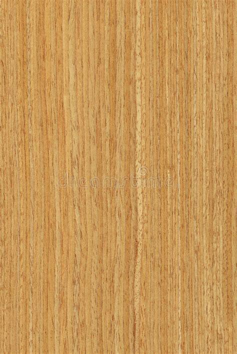 Oak (wood Texture) Stock Image   Image: 8109341