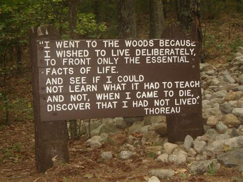 walden book economy favorite quotes of henry david thoreau s walden