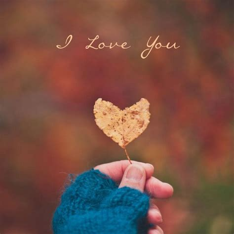 images of love profile pics love dp romantic couple whatsapp dp profile pics for