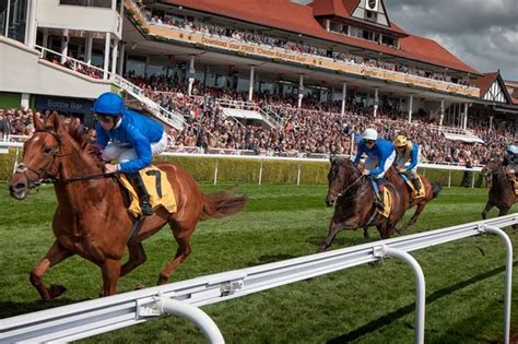 where to park for chester races chester chronicle
