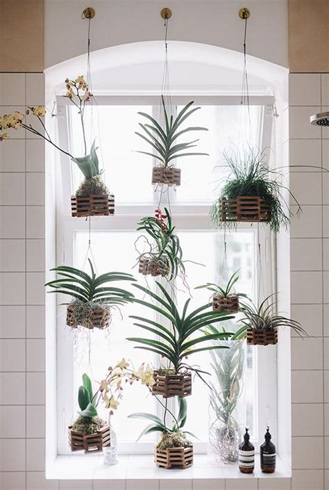 plants for bathroom with no windows zo cre 235 er je privacy in huis zonder gordijnen
