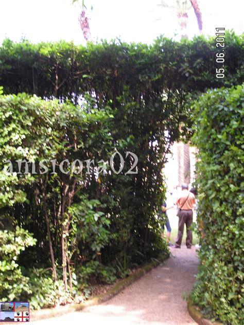 visita giardini quirinale i giardini quirinale amsicora02