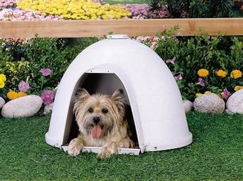 dogloo dog house sizes petmate dogloo xt igloo dog house size medium gotpetsupplies com