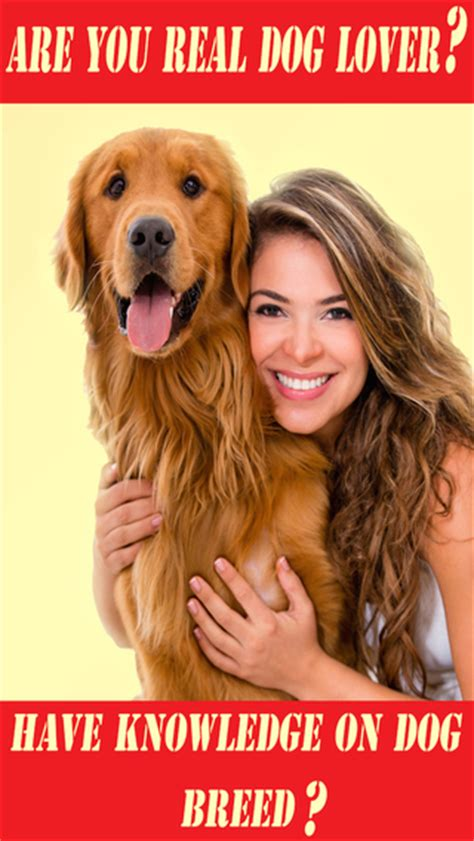when do golden retrievers stop biting stop puppies from chewing carpet how to to stop biting best for