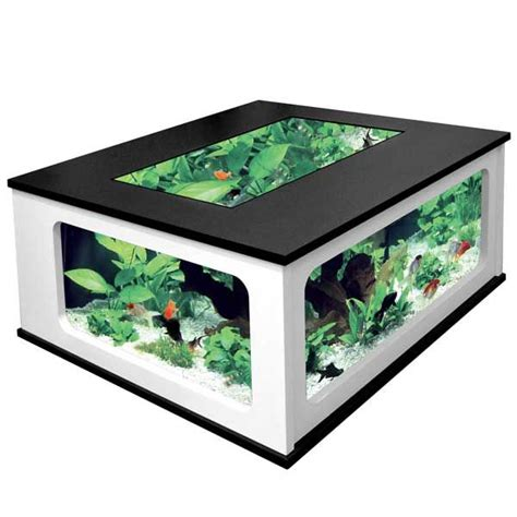 1000 ideas about fish tank coffee table on
