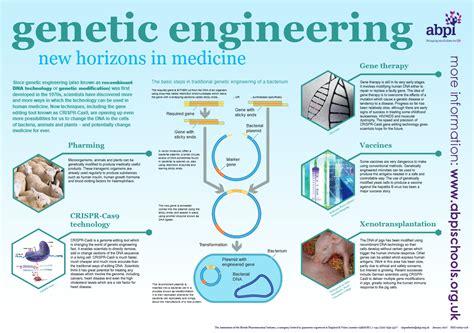 Genetic Engineering genetic engineering schoolscience co uk