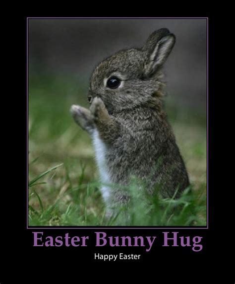 Cute Easter Meme - cute bunny quotes quotesgram