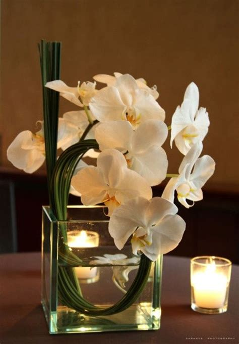 Phalaenopsis Orchid Centerpiece Planning Our 17 Best Images About Bathroom Flowers On