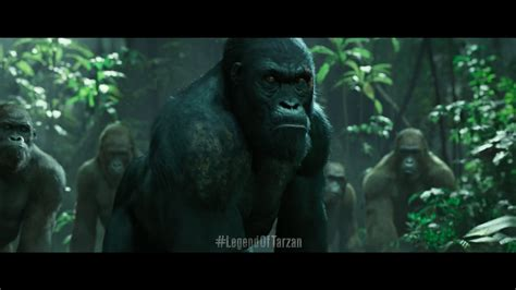 what is her name tarzan geico commercial what is the name of the tarzan on the geico commercial