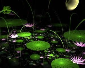 Lotus Pond Wallpaper Moonlight The Lotus Pond By Fractist On Deviantart