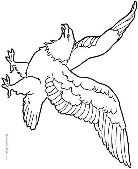 soaring eagle coloring page bald eagle american patriotic symbol 001
