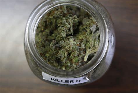 Colorado Marijuana Detox by Could Marijuana Help Treat Painkiller And Heroin Addiction
