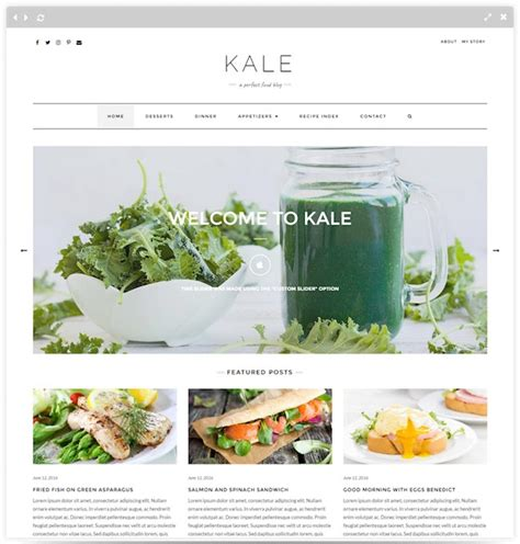 blogger themes food 30 best food blog wordpress themes for 2018