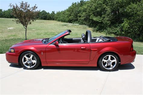 2003 ford svt 2003 ford svt mustang cobra convertible related infomation