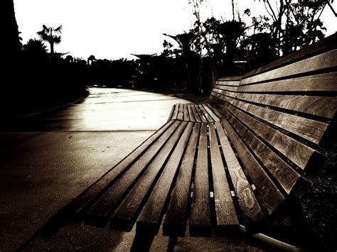 lonely bench the lonely bench by paperbagsman on deviantart