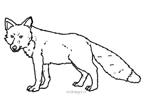 coloring page red fox hd images