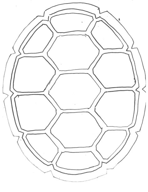 turtle pattern jpg turtle shell drawing drawing sketch gallery