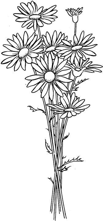 secret garden colouring book new zealand best 25 flower coloring pages ideas on