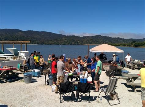 scow bay oyster farm tomales bay oyster co marshall restaurant reviews