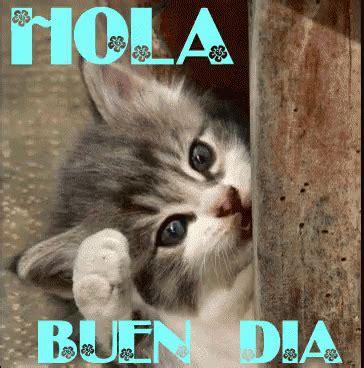 imagenes hola hola buen dia hola buen gif hola buen dia gifs say more with tenor