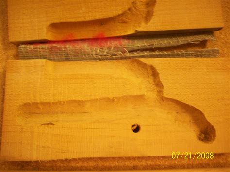 can bed bugs live in wood floor do bed bugs live in wood do bed bugs live in wood 28