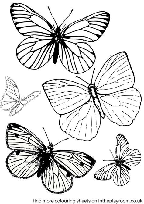 the 25 best printable butterfly ideas on