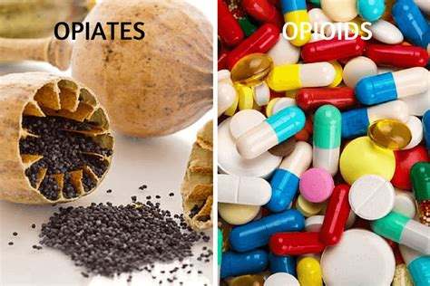 Does Advanced Detox Solutions Work For Opiates by Opiates And Opioids What S The Difference Between Them