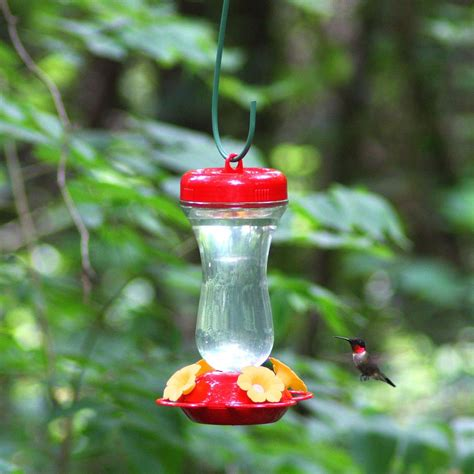 perky pet 23 quot metal hook hummingbird bird feeder plant