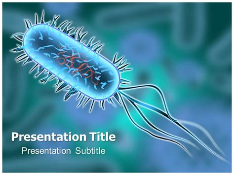 ppt templates free download microbiology powerpoint templates free bacteria images powerpoint