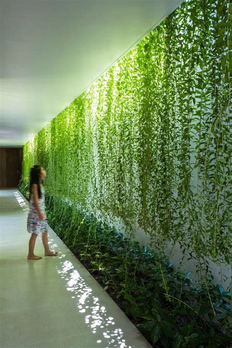 casa moderna jardim  vietna arquitetura ecologica