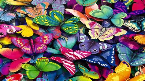 download fantastic butterfly screensaver animated fantastic butterfly screensaver http www screensavergift