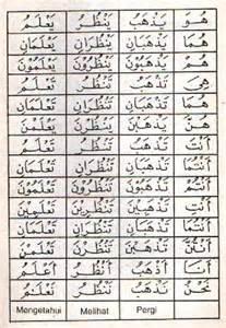 bahasa arab dlamir kata ganti alqur anmulia