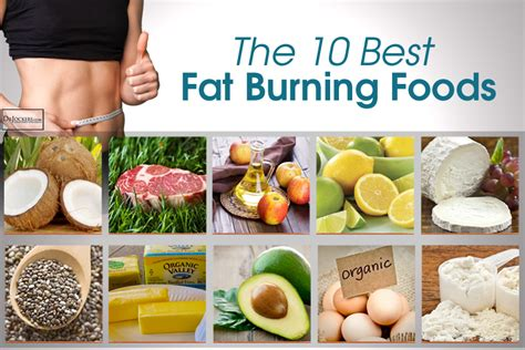 The Best Diet Fats And by The 10 Best Burning Foods