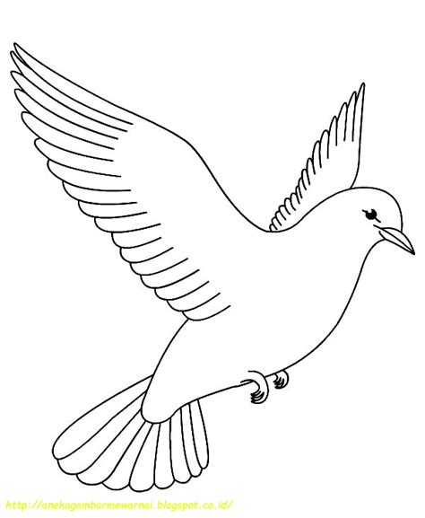 coloring pages birds printable fat bird printable coloring pages coloring pages