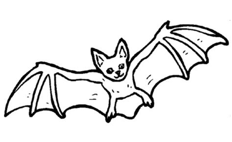 imagenes de halloween para dibujar faciles dibujos de halloween para colorear
