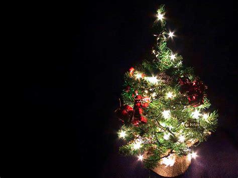 arbol de navidad peque 241 o 1024x768 fondo de pantalla 1710