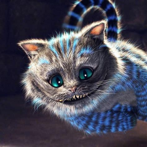 wallpaper cat tattoo stregatto tattoos pinterest alice cheshire cat and