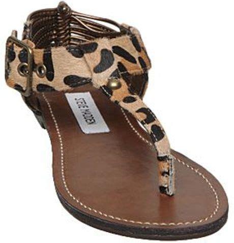 leopard sandals flat steve madden serentil sm leopard toe post flat sandals in