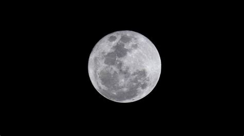 Trump President by La Lune L Express