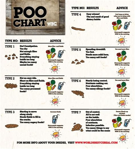 Cloudy Urine Detox by Best 25 Poo Chart Ideas On Color Of Urine