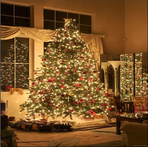 big christmas tree in small room 10x10ft glitter tree lights living room small rail books custom photography