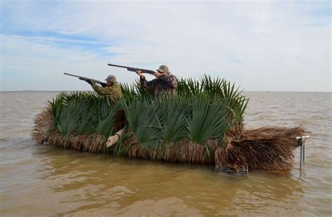 best duck hunting boat setup 12 pups in hunting blinds keeping an eye out